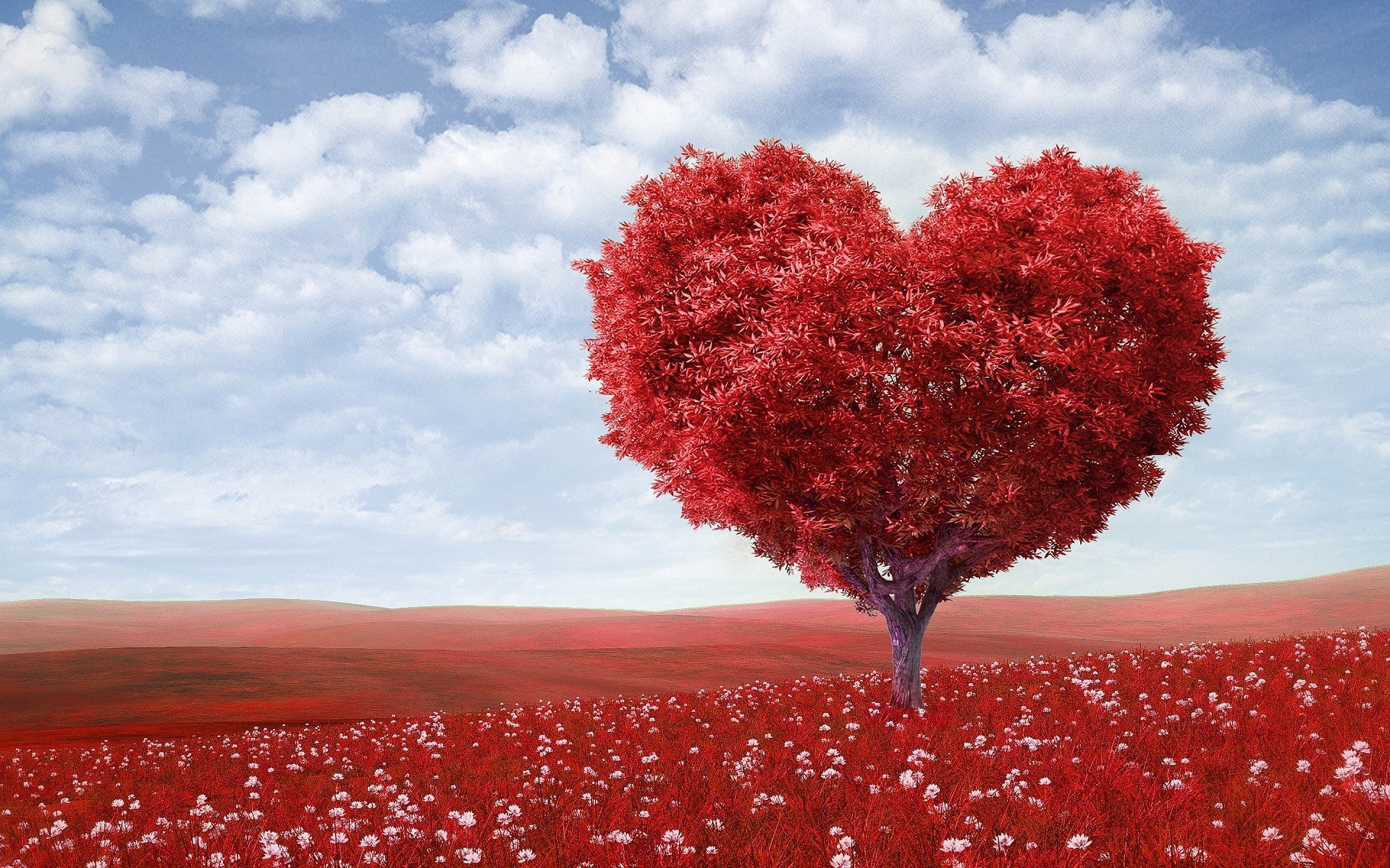 red heart shaped tree in red flower field, educating readers how to prevent heartbreak